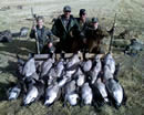 DropZone Goose Decoys Success